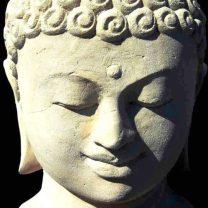 cropped-smiling-buddha.jpg