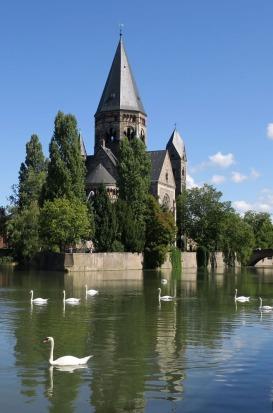 marita-king-swans