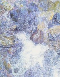 San Anselmo Creek detail